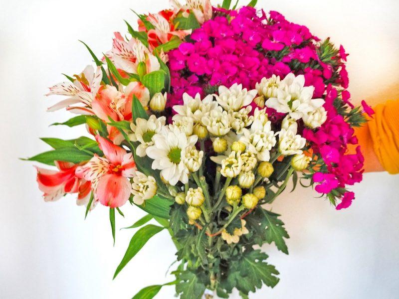 Evlerinizi Süsleyecek En Doğal Çiçekler
